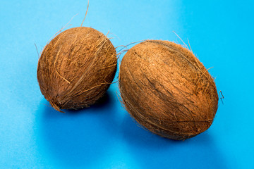 Coconuts isolated on blue background