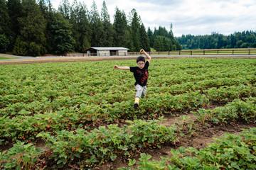 Young boy running through a farm of strawberries