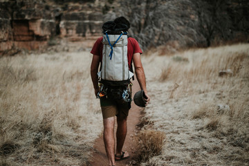 Rear view of man with backpack walking on trail amidst grassy field in forest