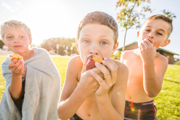 Portrait of shirtless friends eating apples while standing on grassy field against sky