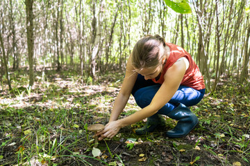 Woman picking edible mushrooms while crouching on field in forest