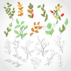 Leaves, twigs. Set. Sketch.