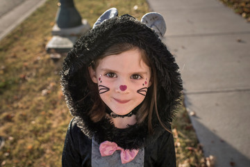 Portrait of cute girl wearing cat costume standing on lawn during Halloween