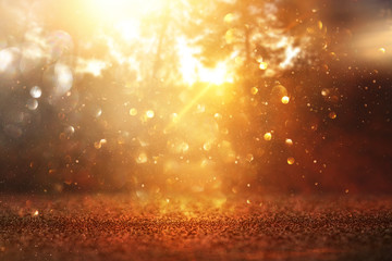 blurred abstract photo of light burst among trees and glitter golden bokeh lights. Wall mural