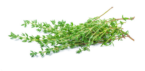 Sprig of fresh thyme leaf isolated on white background