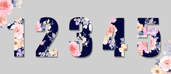 Beautiful watercolor roses, peony flowers and numbers