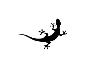 Lizard vector illustration logo template