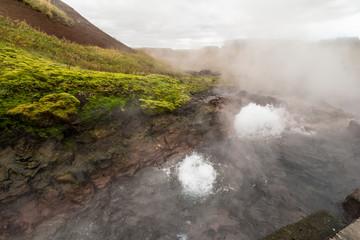 Deildartunguhver hot nature steams in iceland