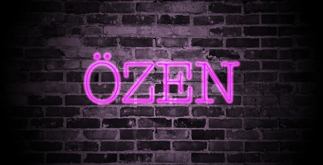 first name Özen in pink neon on brick wall