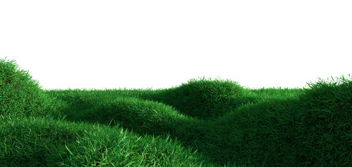 Green grass growing on hills
