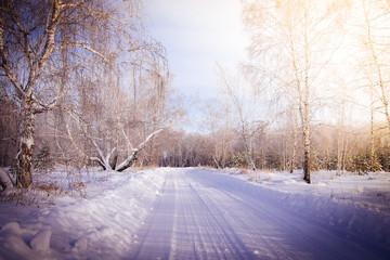 Siberia winter set