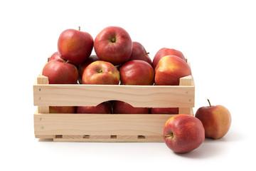 Äpfel (Red Jonaprince)