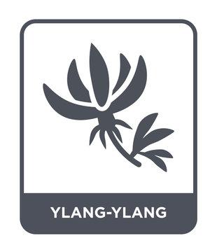 ylang-ylang icon vector