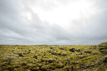 Iceless landscape with moss, lava, stone and lichen.