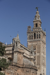 """Cathedral of Seville """"Santa Maria de la sede"""". one of the landmarks of the city"""