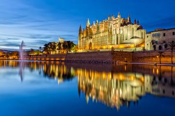 The Cathedral La Seu at Night in Palma de Mallorca