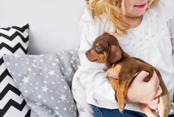 Cute little girl playing with small dog. Closeup photo