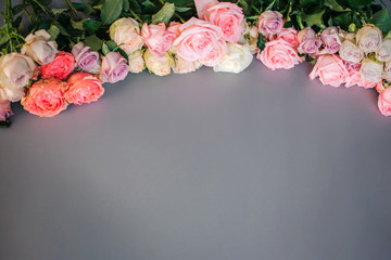 Picture of colorful roses lie in the arc form on grey background.