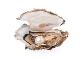 Open oyster with pearl isolated on white background