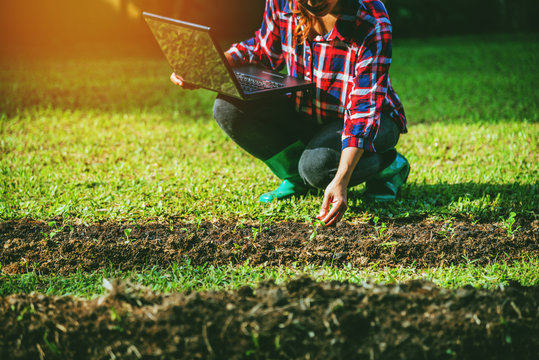 Young Asian woman with laptop sitting in plots vegetable garden. using agriculture technology using tablet computer analysis data read a report.