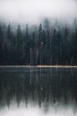 Beautiful foggy autumn forest,trees reflection on lake.