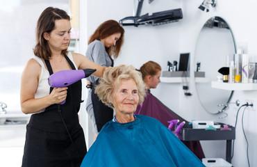 Hairdresser drying hair of elderly female