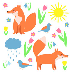 red fox character animal cartoon element set spring flowers tulip snowdrop narcissus weather sun cloud rain for your design