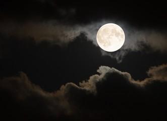 Full moon in the summertime Fotoväggar