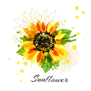 Sunflower in abstract hand drawn style. Vector isolated flower