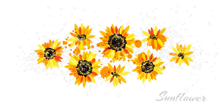 Sunflowers in abstract hand drawn style. Vector isolated flowers