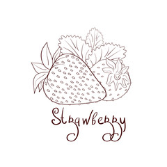 Strawberry. Sketch. Coloring. On a white background.