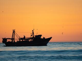 Barco pesquero a contraluz