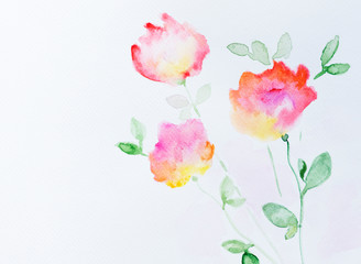 Wall Mural - Flowers watercolor illustration.