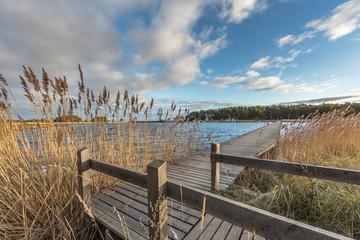Holzsteg am meer