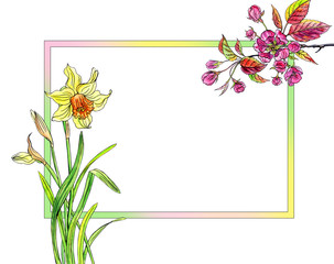 Frame with narcissus and red apple flowers, watercolor illustration, spring background, greeting card, banner, etc.