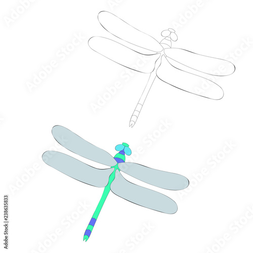 Vector Isolated Bright Dragonfly Coloring Book Stock