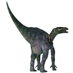 Iguanodon Dinosaur Tail - Iguanodon was a herbivorous ornithopod dinosaur that lived in Europe during the Cretaceous Period.