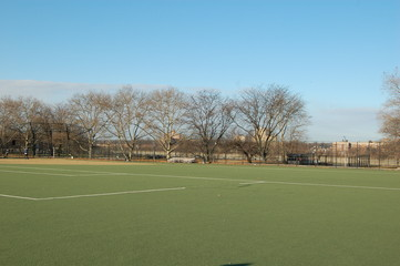 soccer field on a sunny day