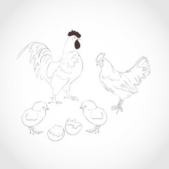 Rooster, hen, chick. Dark pattern on a light background. Sketch.