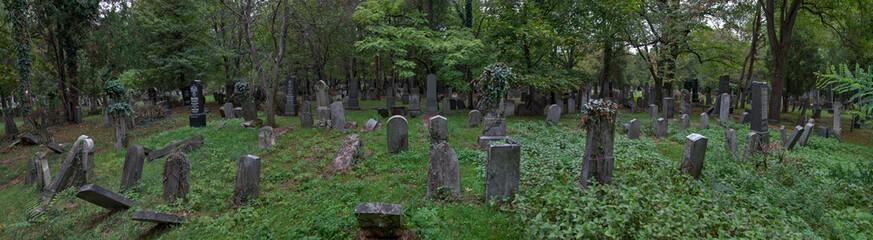 Printed roller blinds Cemetery Der Zentralfriedhof in Wien