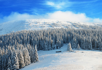 Sunny day in winter mountains