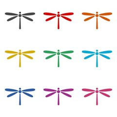 Dragonfly design on white background, dragonfly icon or logo, color set