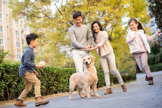 Happy young family playing with dog
