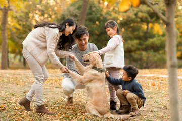 Happy young family with dog in autumn woods