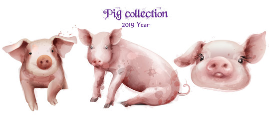 Cute pigs icon set in watercolor Vector. Pig New Year symbols isolated templates