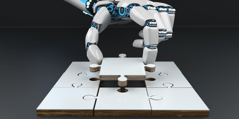 Humanoid Robot Hand Puzzle