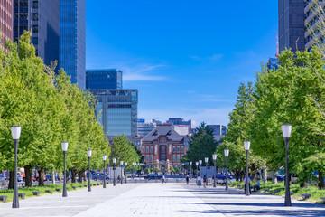 (東京都ー都市風景)青空の下の東京駅とビル群7 Wall mural