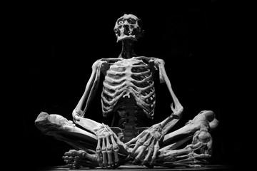 human skeleton people isolated black white art model medicine horror  Wall mural