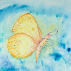 yellow and orange flying butterfly in a blue turbulent sky. The dabbing technique near the edges gives a soft focus effect due to the altered surface roughness of the paper..