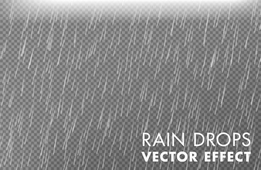 Rain drops on the transparent background - Vector effect 2